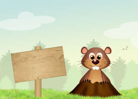 animal den: Groundhog