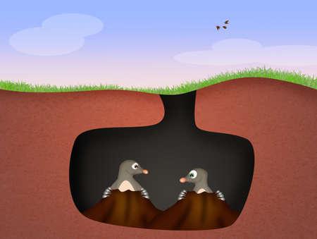 animal den: funny moles in the den