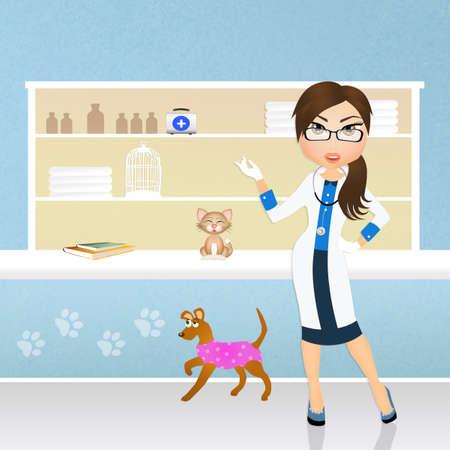 veterinary care: veterinary care animals Stock Photo