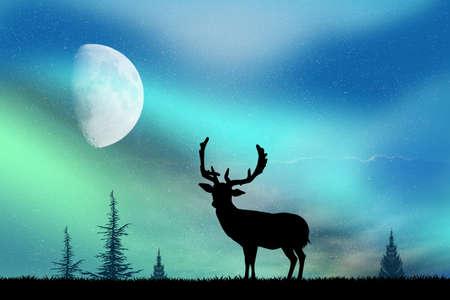 northern lights: deer and the Northern Lights