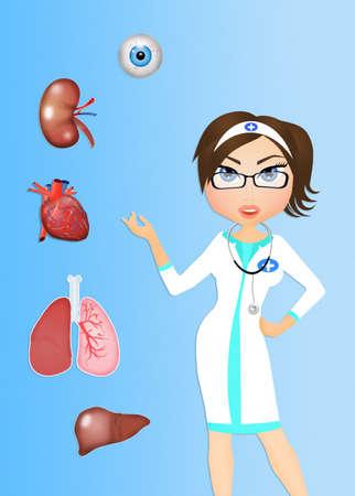 donacion de organos: donante de órganos para Trasplante Foto de archivo