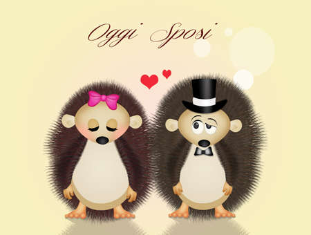 wedding: Wedding hedgehogs