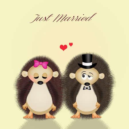 spouses: hedgehogs spouses