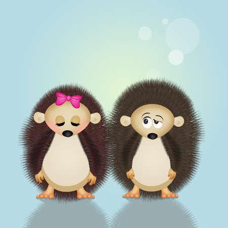 carefree: hedgehogs couple