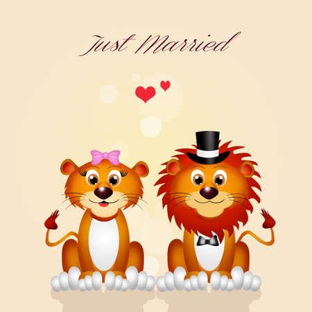 spouses: lion and liones spouses Stock Photo