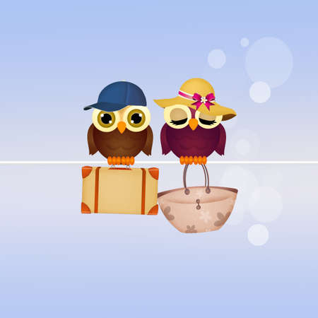couple in summer: couple of owls on summer holidays