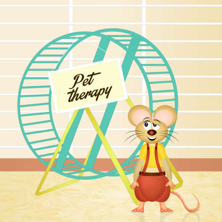 pet therapy: hamster for pet therapy