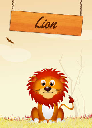 carefree: lion Stock Photo
