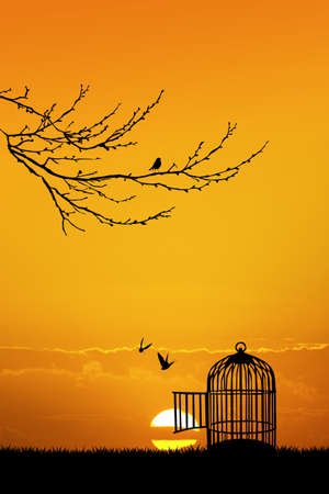 skylight: cage for birds at sunset Stock Photo