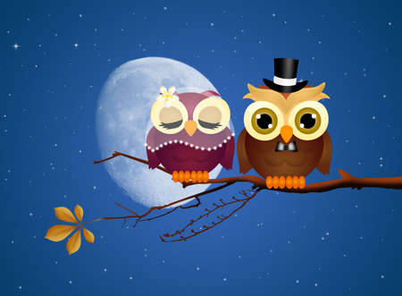 rapacious: Owls in love Stock Photo