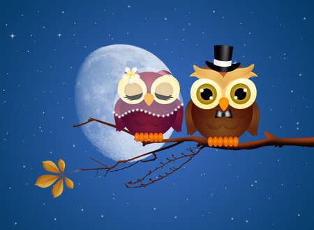 augury: Owls in love Stock Photo