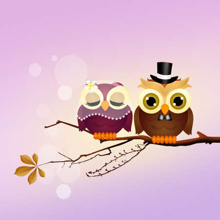 Owls in love Stock Photo