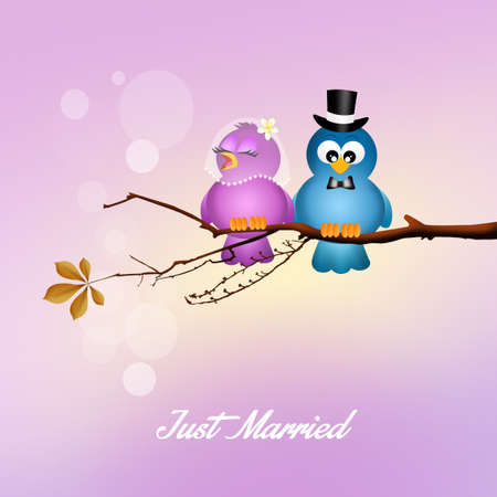 augury: Wedding birds