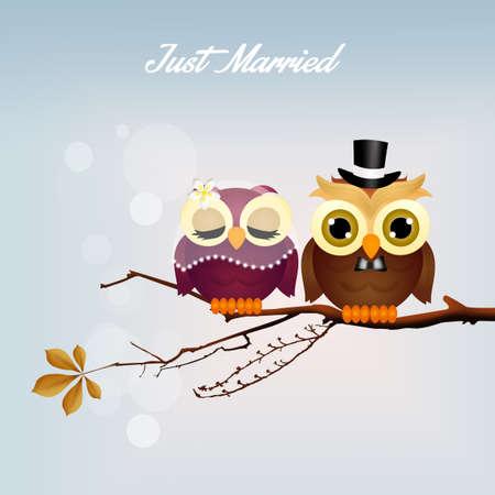 rapacious: Wedding owls