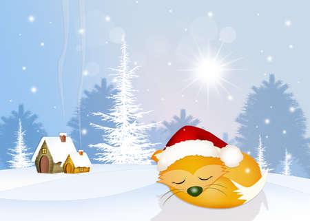 artful: red fox sleeps in winter