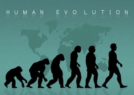 origen animal: silueta de la evolución humana