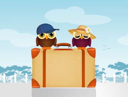 travelers: travelers owls on suitcase Stock Photo