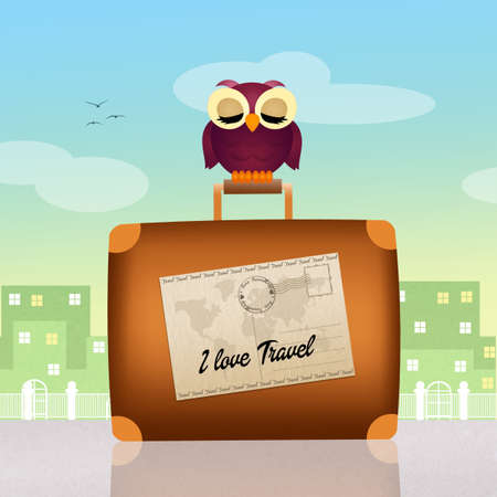 travelers: travelers owl on suitcase