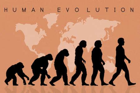 De menselijke evolutie