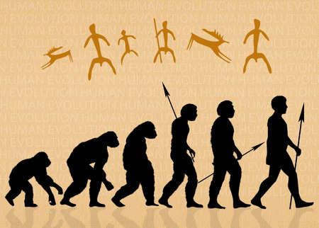 human evolution: Human evolution