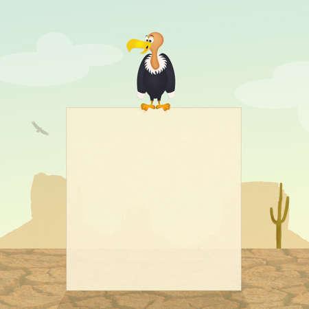 vulture: vulture in the desert