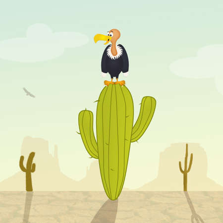 vulture: vulture on cactus in the desert
