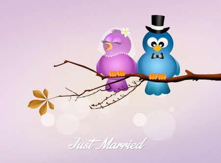 spouses: Marriage of birds Stock Photo