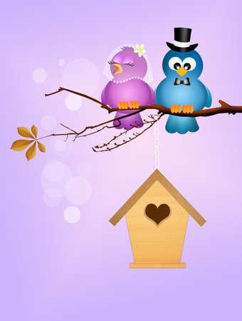 spouses: birds in love