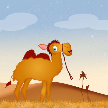 humps: funny camel in the desert Stock Photo