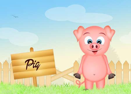 pigsty: pig