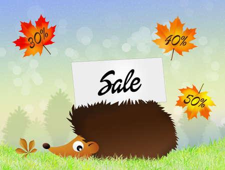 seasonal: seasonal sale