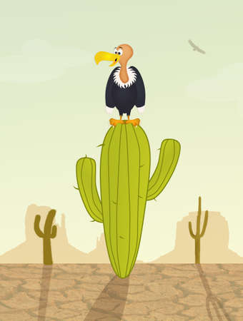 vulture: vulture on cactus Stock Photo