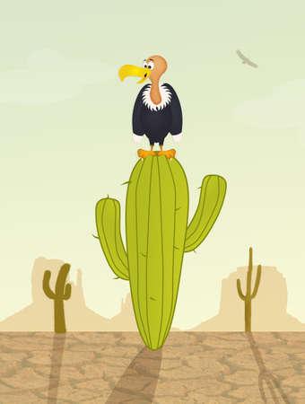 birds desert: vulture on cactus Stock Photo