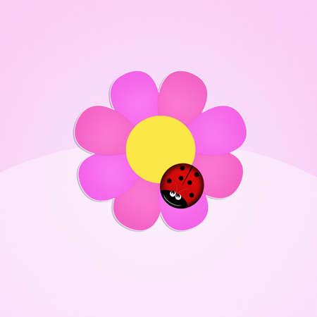 ladybug: ladybug on flower