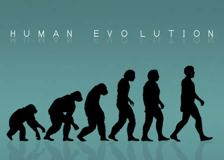 human evolution: human evolution silhouette Stock Photo