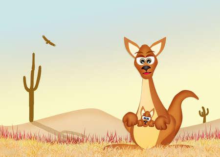Australian kangaroo in the desert Stock Photo