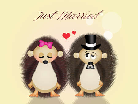 wedding: Wedding hedgehogs