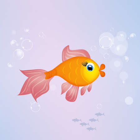 red  fish: red fish in the ocean