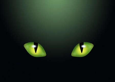 cat eye: eye cat in the dark