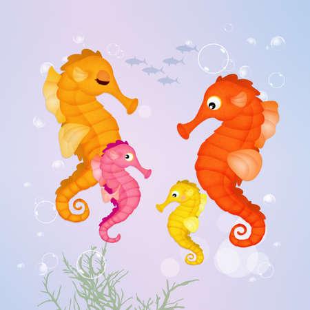 family of seahorses Stock Photo