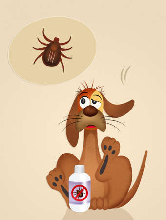 parasites: dog with ticks Stock Photo