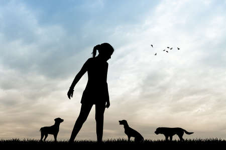pet therapy: dog sitter silhouette at sunset Stock Photo