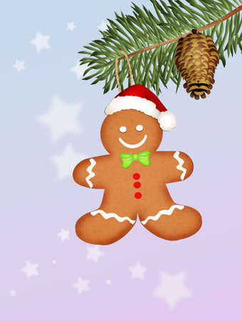 ginger: At Christmas ginger biscuits