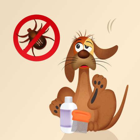 annoying: dog with ticks Stock Photo