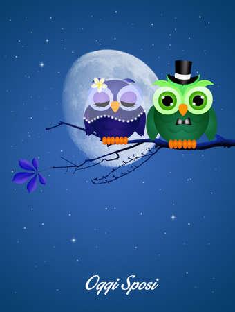 augury: owls spouses Stock Photo