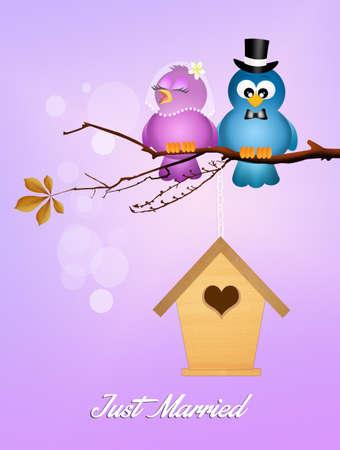 happy couple house: Wedding birds