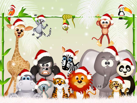 wild animals at Christmas