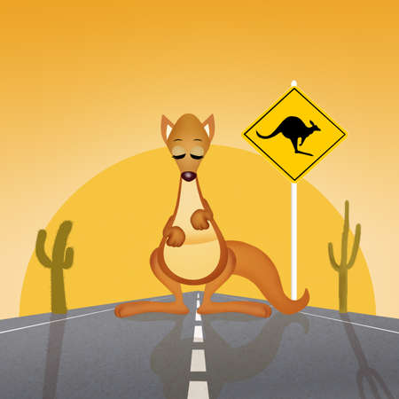 arid: attention to the crossing of kangaroos