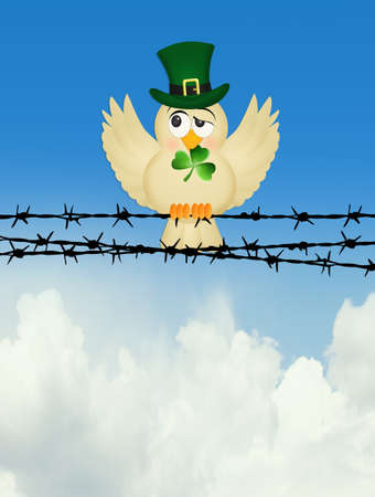 bird with clover on wire