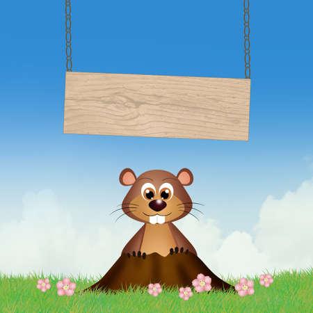 Groundhog in the den